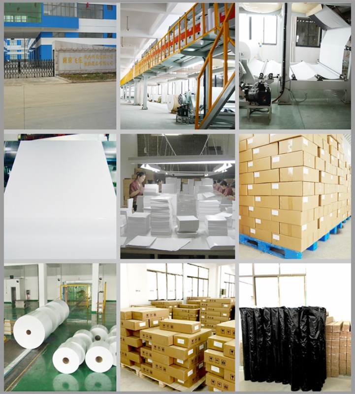 Feiyue Paper Industrial Co.,Ltd